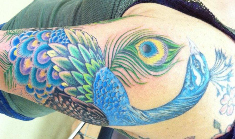 Pfau Tattoo Motive und Pfauenfeder Tattoo Bedeutung alletattoo.de 15