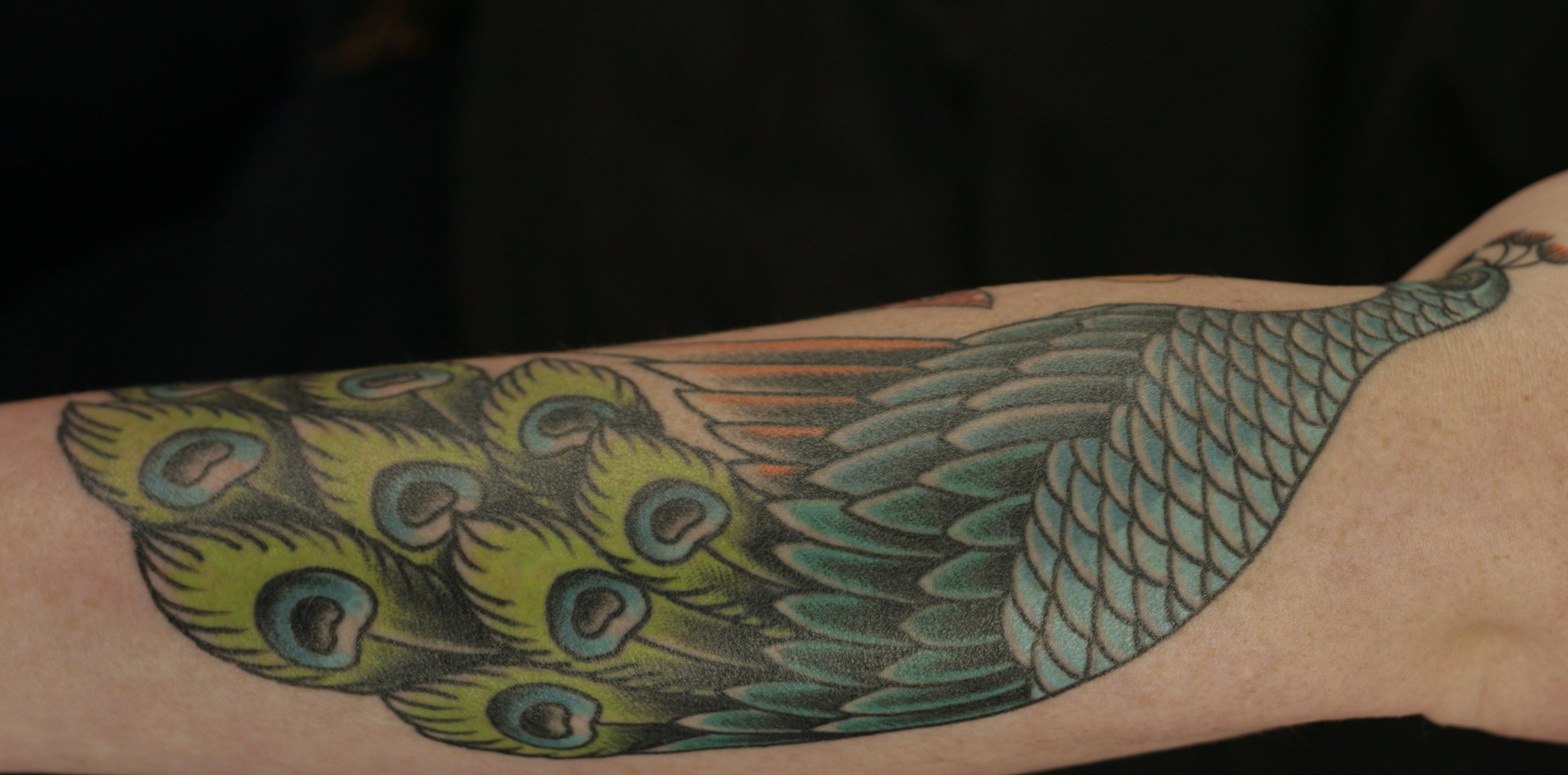 Pfau Tattoo Motive und Pfauenfeder Tattoo Bedeutung alletattoo.de 11