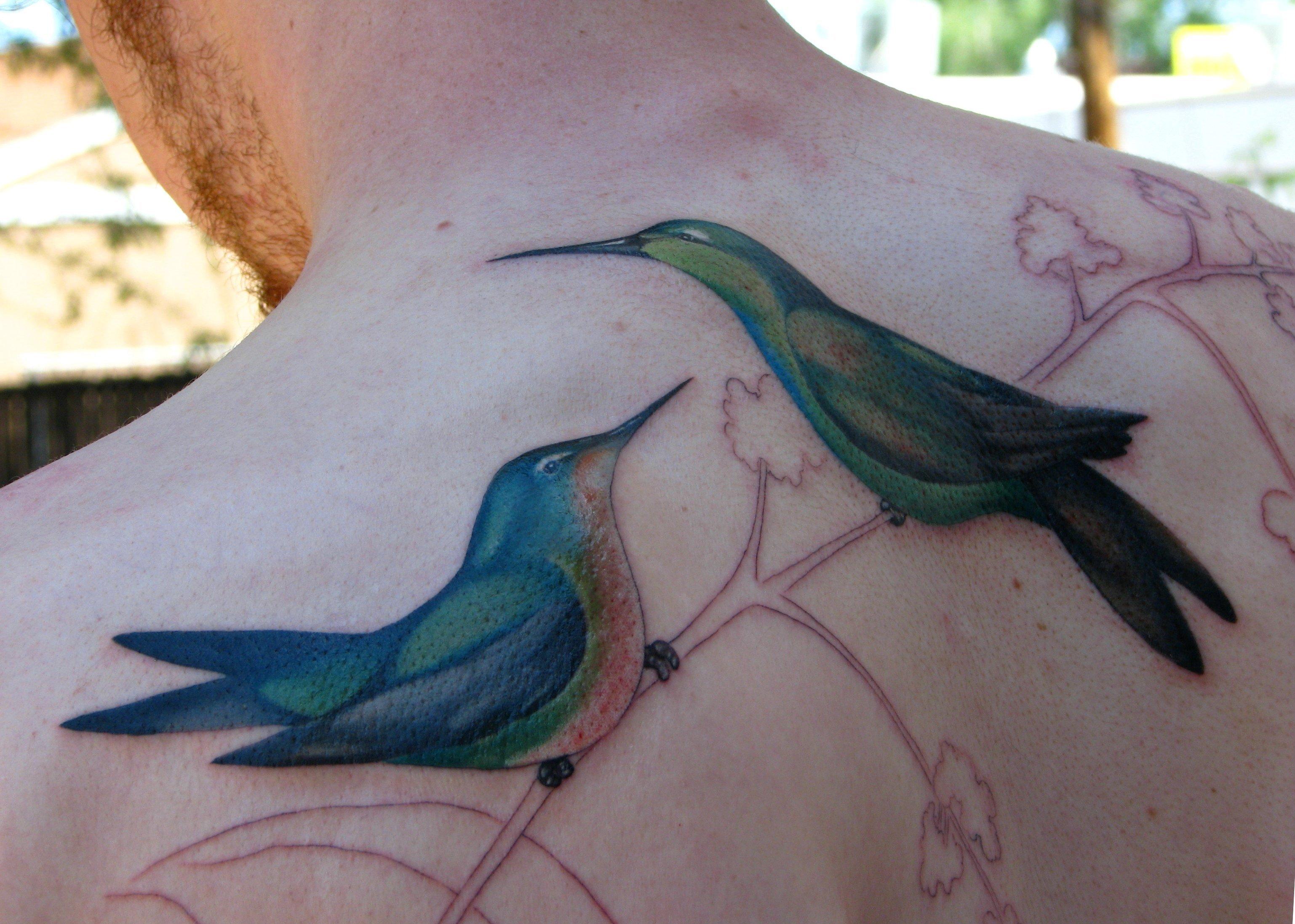Kolibri Tattoo Motive und deren Bedeutung alletattoo.de 14