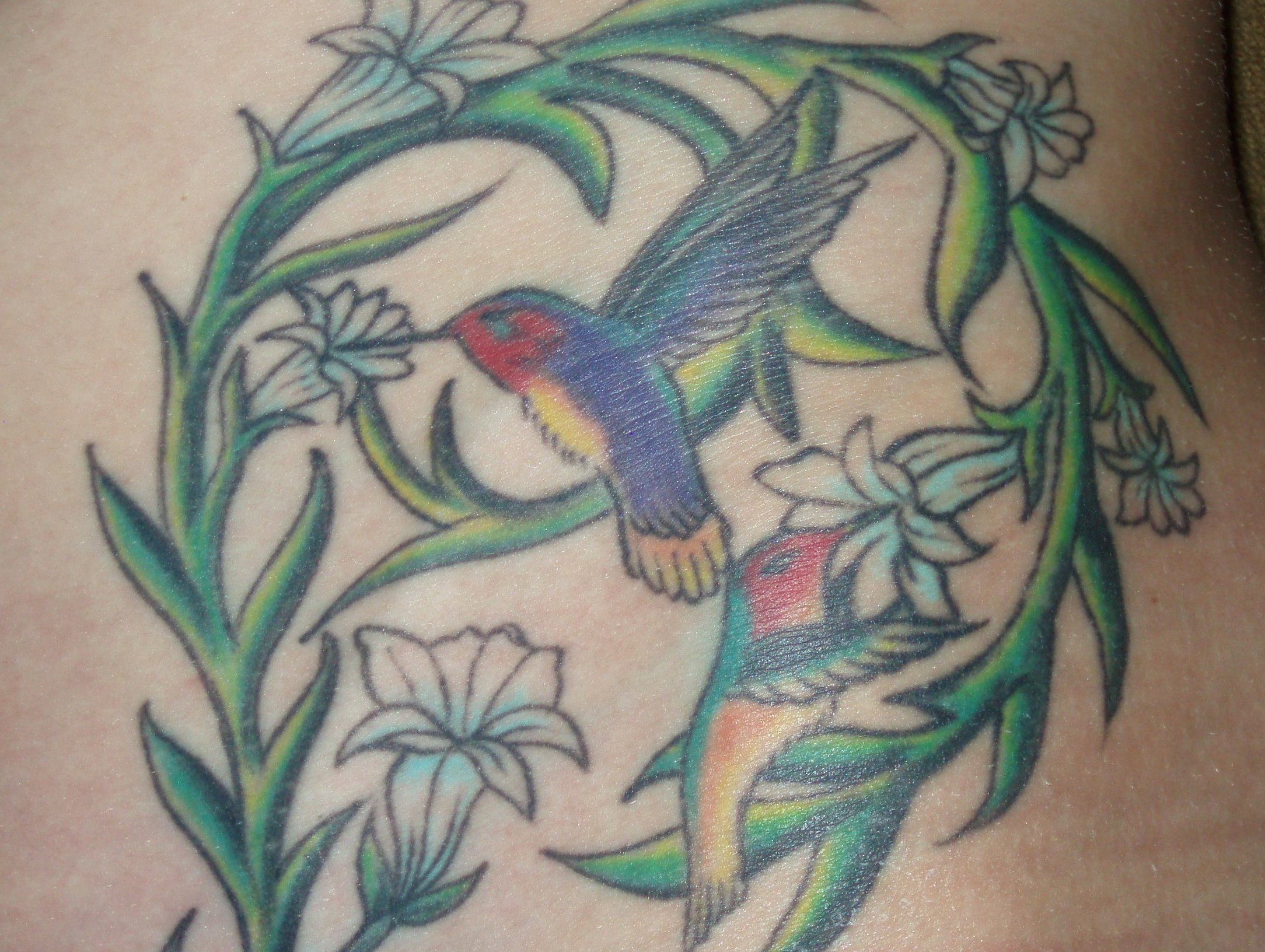 Kolibri Tattoo Motive und deren Bedeutung alletattoo.de 17