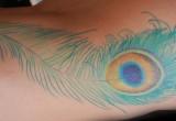 Pfaufeder tattoo ideen seiten