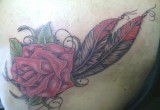 Rose und feder tattoo