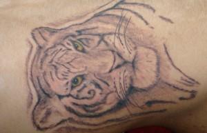 Tiger Tattoo Motive und Bedeutungen alletattoo.de 12