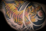 Tiger Tattoo am Brust