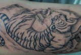 Tiger Tattoo am Oberarm 2