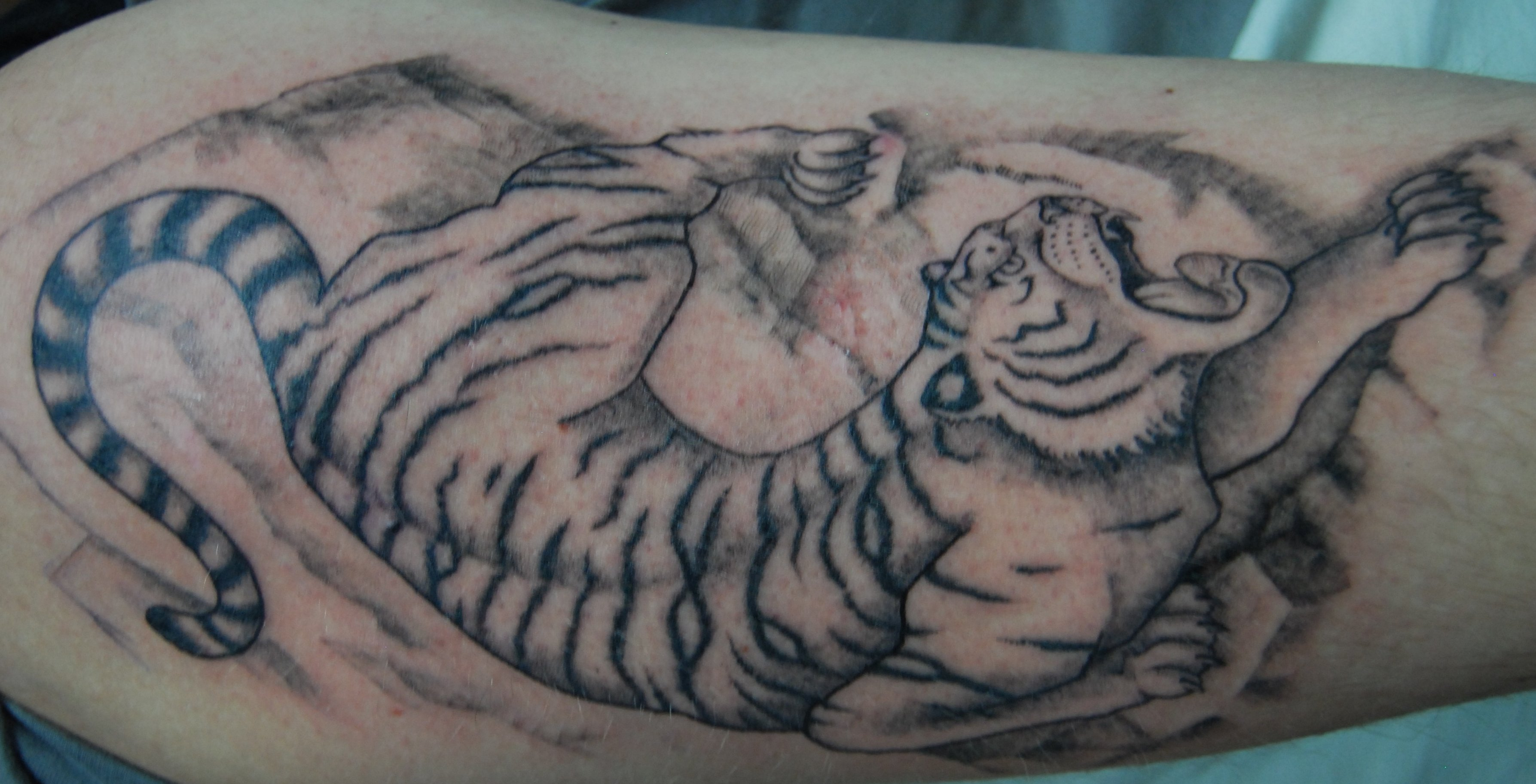 Tiger Tattoo Motive und Bedeutungen alletattoo.de 18