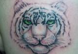 Weiss Tiger Tattoo am Ruecken