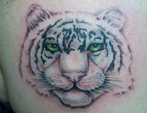 Tiger Tattoo Motive und Bedeutungen alletattoo.de 4