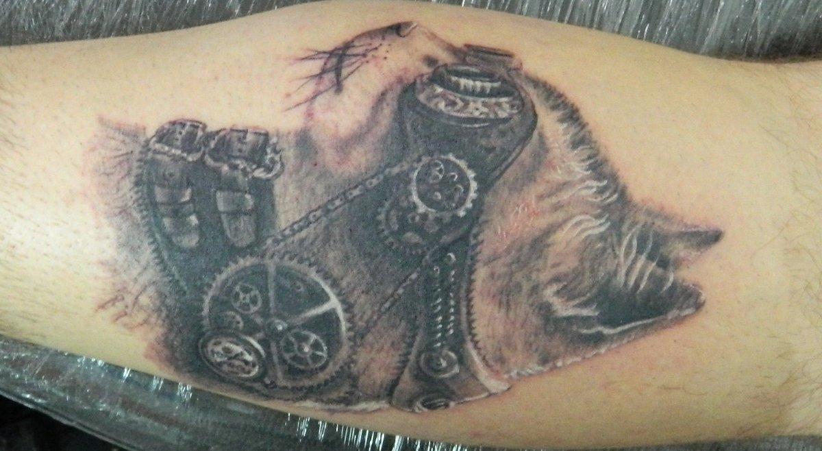 Katze-Tattoo-am-Arm-Mann