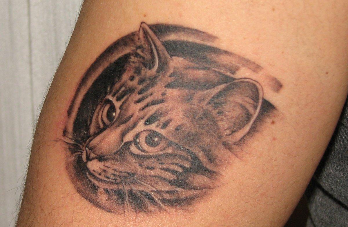 Katze-Tattoo-auf-Oberarm-