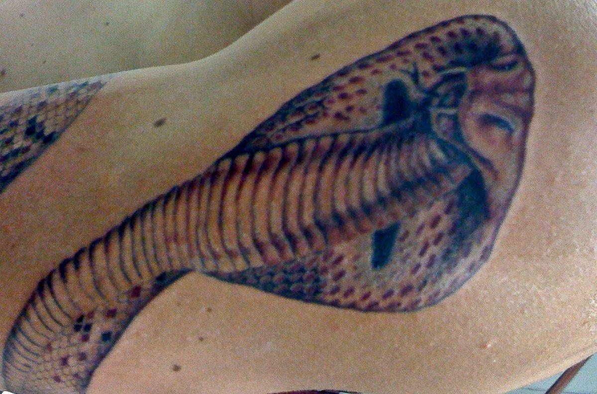 Schlangen Tattoo und die Bedeutungen alletattoo.de 5