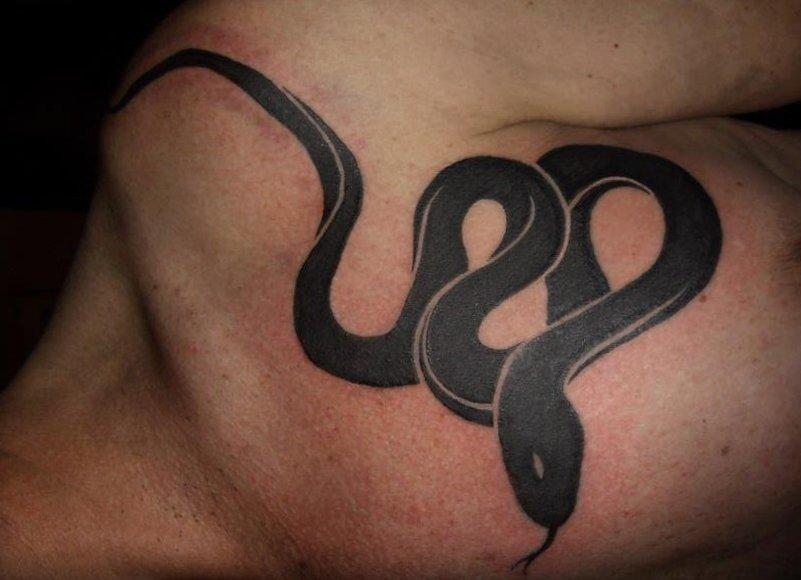 Schlangen Tattoo und die Bedeutungen alletattoo.de 1